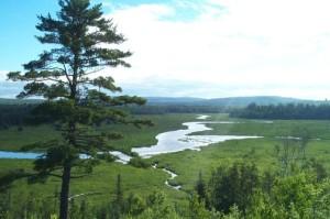 union river