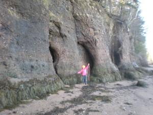 Cecily Mill Cove 2012