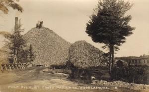 Woodland Wood Pile St Croix Paper 1928